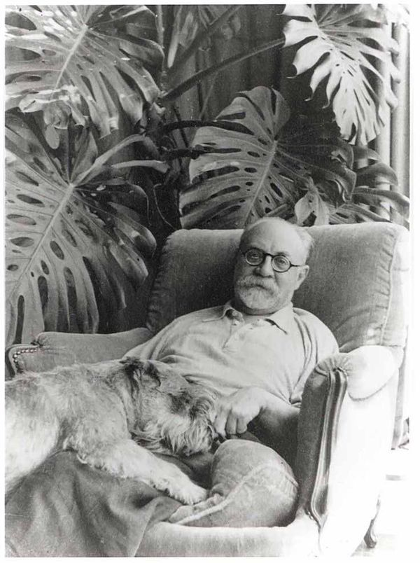 """Henri Matisse and Dog Holland Cotter of The New York Times gives """"Henri Matisse: The Cut-Outs,"""" now on view at MoMA, a glowing review that, as a collage artist who spends a lot of time in bed, I found very..."""