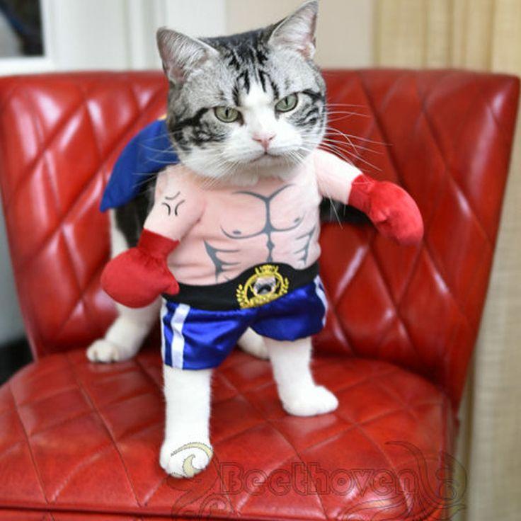 Dia das bruxas engraçado gato de estimação dog boxer standing traje cosplay roupas primavera pequeno médio filhote de cachorro partido brasão jacket roupas em Casacos e Jaquetas para Cachorros de Home & Garden no AliExpress.com   Alibaba Group
