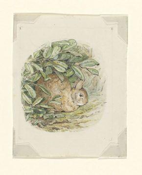 Ilustração que Beatrix Potter tencionava usar nas Aventuras de Pedrito Coelho, aguarela, 1902