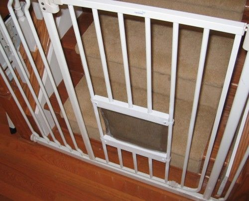 Cat Flap In A Baby Gate Cats Pictures Of And Pet Door