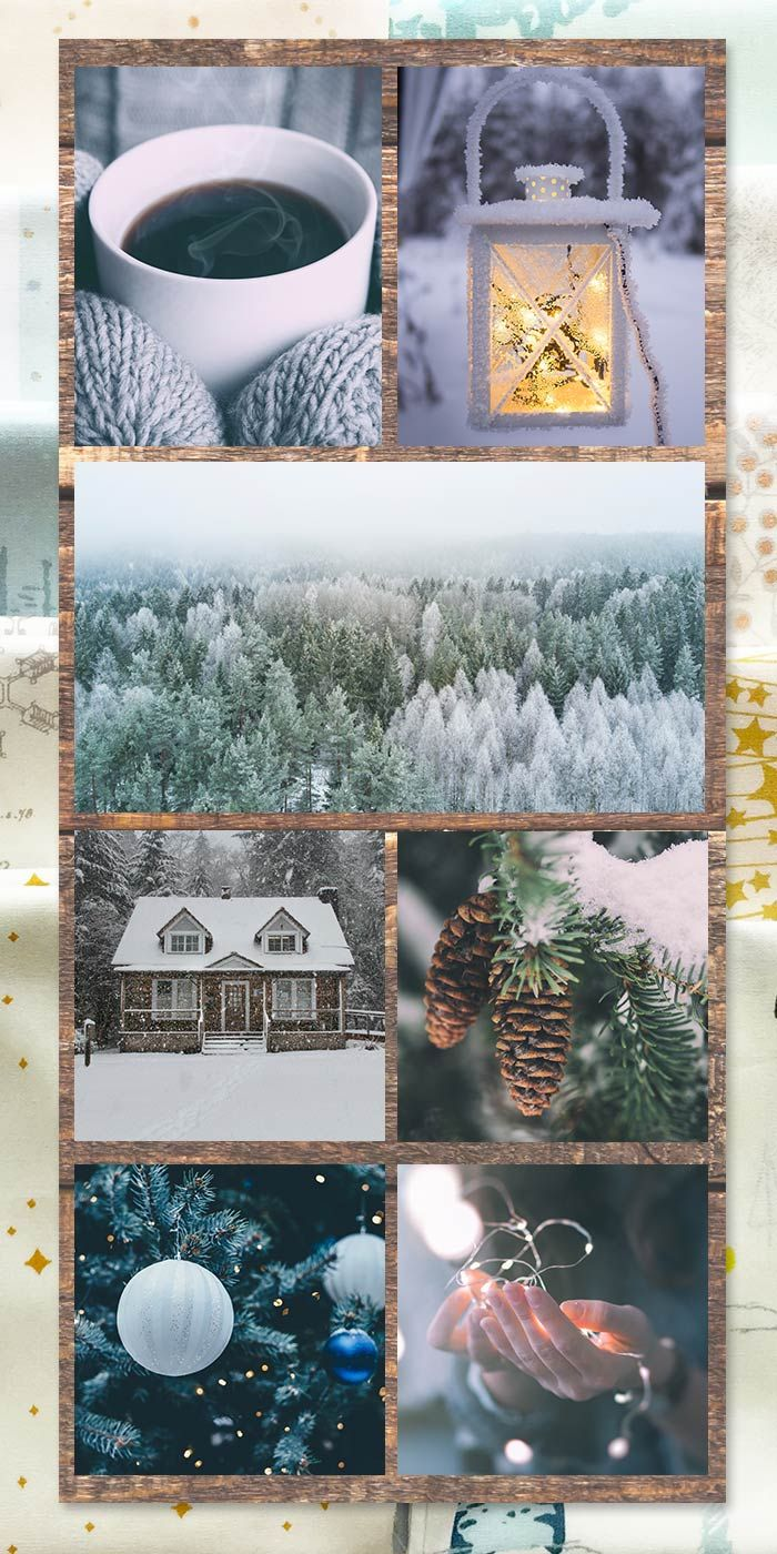 Winter wonderland  mood board colorfun   Winter wonderland ...