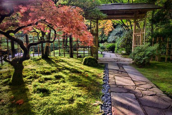 Buddhist Ceremony Traditional Japanese Garden: Tea Gardens (cha-niwa Or Roji-niwa) The Tea Ceremony Is
