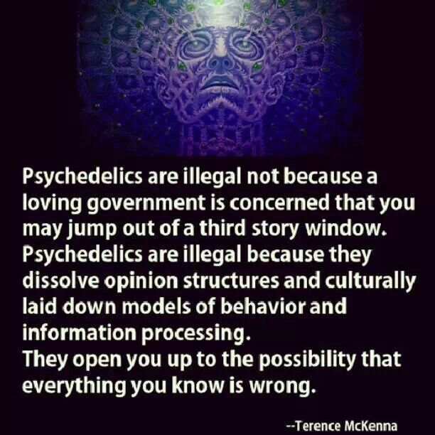 84 best psychedelics grateful dead consciousness images on psychedelics fandeluxe Image collections