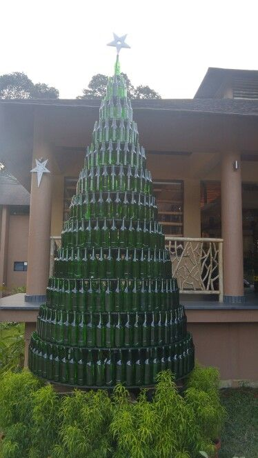 450 recycled beer bottles now a xmas tree. Good work Team: Kofiland