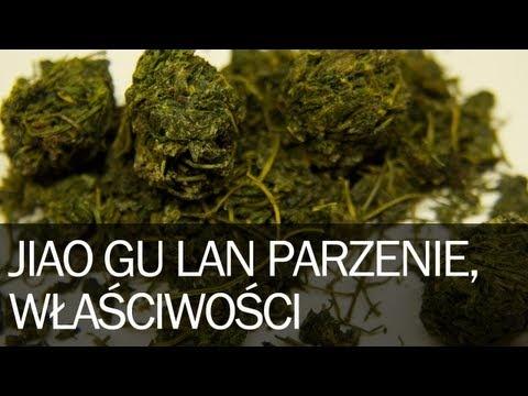 Jiao Gu Lan, zioło długowieczności lub zioło nieśmiertelności to roślina z grupy dyniowatych. Rośnie w postaci pnącza i występuje w południowych Chinach w północnym Wietnamie, można też znaleźć ją w Japonii i Korei, ale o zbiorach stamtąd nie słyszałem.
