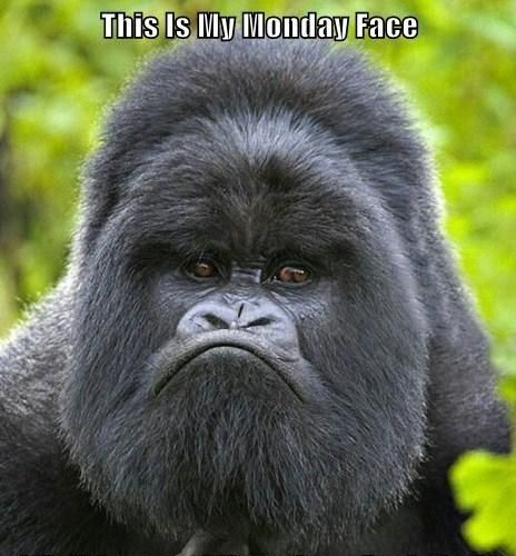 This is my Monday after a long night of Sunday duty face.