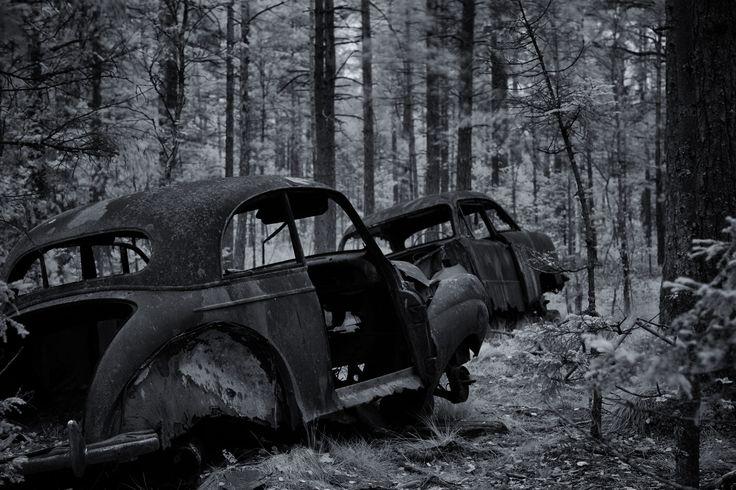 Car Graveyard I