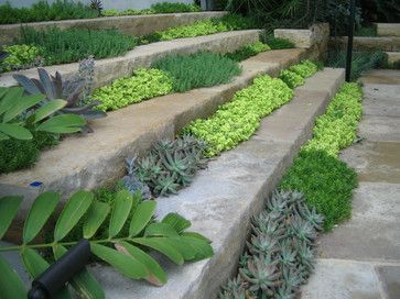 Garden steps textured with succulents :: from Root Design - Austin