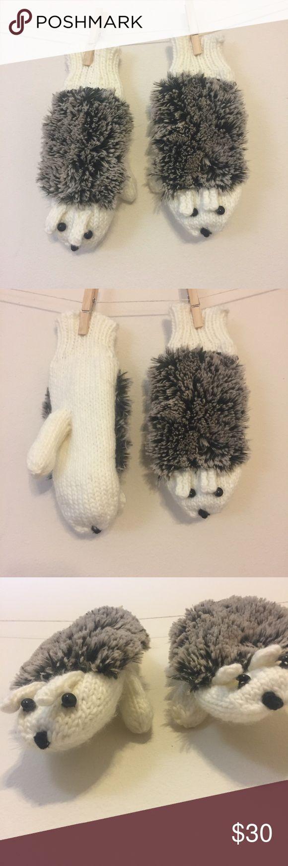 Hedgehog Mittens   NWOT MAKE AN OFFER                                       ⭐️❗️BUNDLES special price❗️⭐️ Accessories Gloves & Mittens