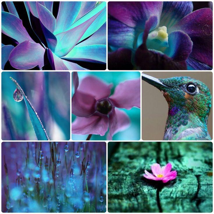 Inspirație în culori #moodboard #colorful