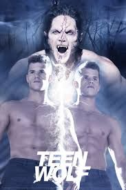Image result for teen wolf twins