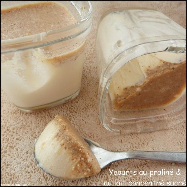 Yaourt au praliné et au lait concentré sucré - Mes Envies et Délices