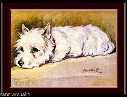 https://i.pinimg.com/736x/42/25/96/422596aa09de29c78dcbfcc580ab97a2--vintage-poster-vintage-dog.jpg