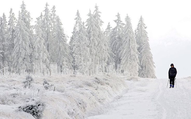 A man enjoys the snow at the 'Signal de Botrange' in the 'Hautes Fagnes' ('High Fens'), a nature reserve in east of Belgium. The Signal of Botrange is the highest point in Belgium, which is located 694 m above sea level in the Hautes Fagnes.