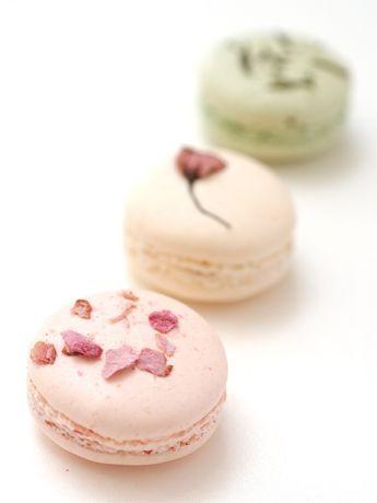 Floral Macarons http://ginza.keizai.biz/headline/photo/323/
