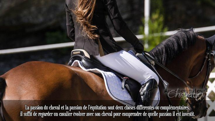 La passion du cheval et la passion de l'équitation sont deux choses différentes ou complémentaires, il suffit de regarder un cavalier évoluer avec son cheval pour comprendre de quelle passion il est investit.