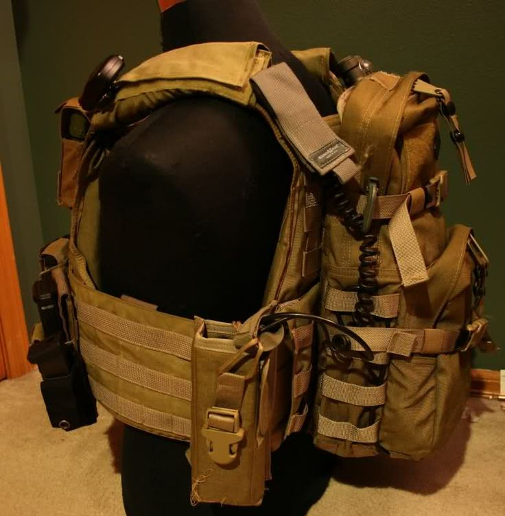 Image result for banshee plate carrier loadout