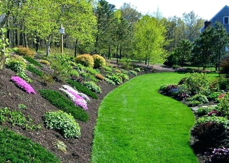hillside landscaping ideas on a budget hillside ... on Small Sloped Backyard Ideas On A Budget  id=87845