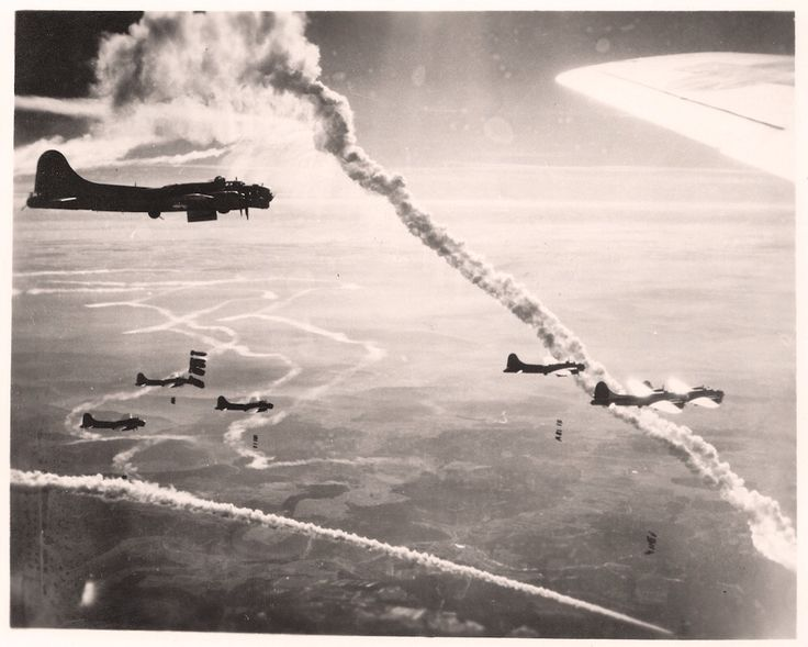 Coupons for 100th bomb group