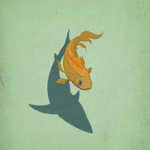 goldfish bcn week