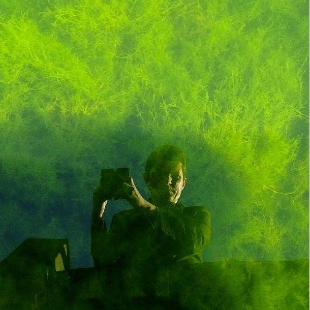 Senator Scott Ludlam's selfie with algae