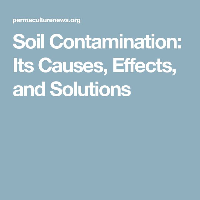 Soil Contamination: Its Causes, Effects, and Solutions