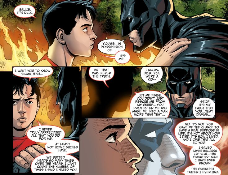 dick grayson thanks bruce wayne 2