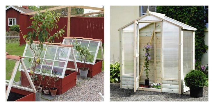 petite serre de jardin choix et conseils serre en bois petite serre et serre. Black Bedroom Furniture Sets. Home Design Ideas