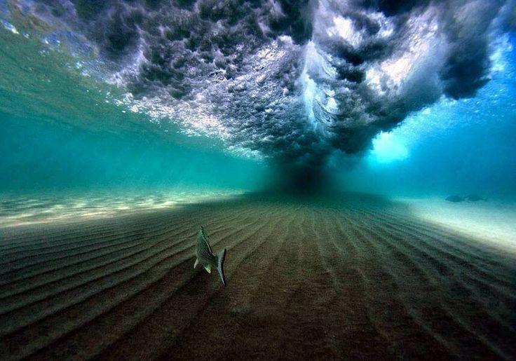 Beneath the alien ocean