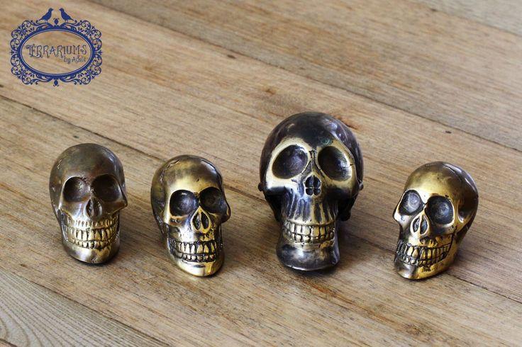 Skulls the next terrarium accessory. Follow us on Facebook.