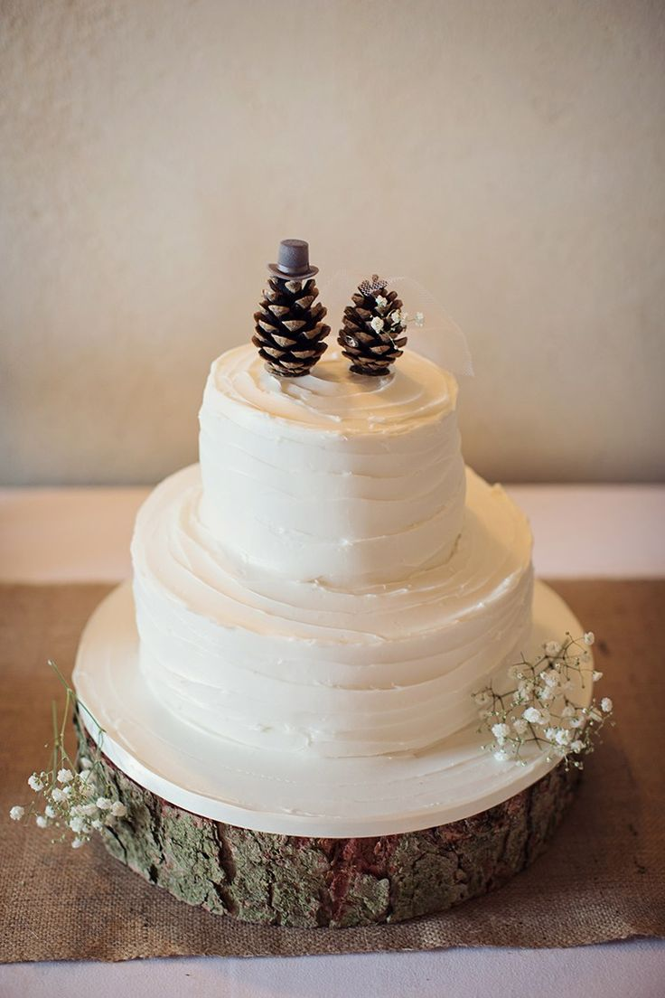 White Butter Cream Cake Rustic Pine Cone Log Alpine Winter Christmas Wedding http://www.tireedawson.co.uk/