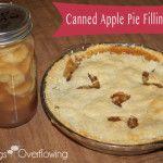 Canned Apple Pie Filling Recipe
