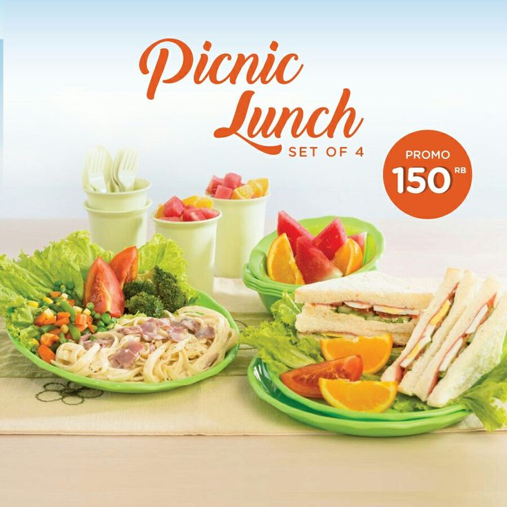PICNIC LUNCH SET 150rb