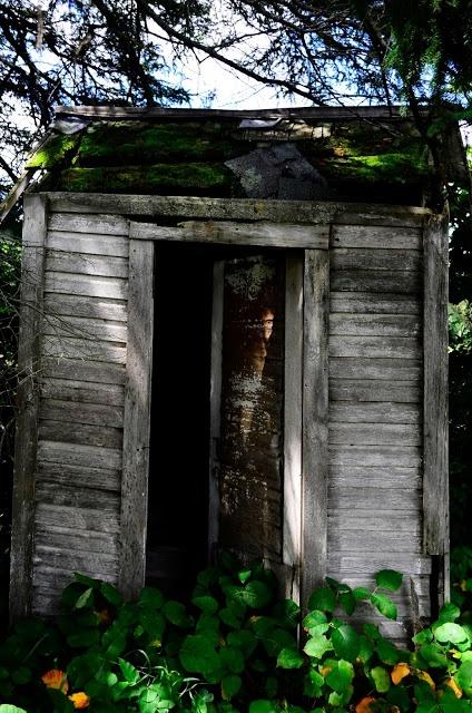 Old hut from summer...  Hut ideas  Pinterest