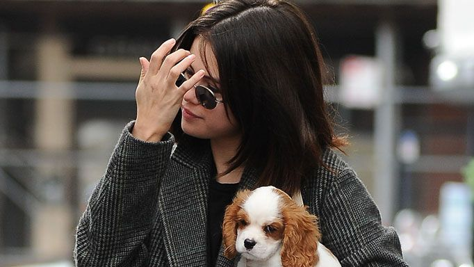 Important! Just some really cute photos of Selena Gomez with her new puppy