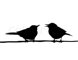 Vektor-Zeichenprogramm zwei Vögel sitzen auf Niederlassung