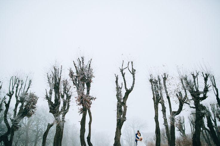 Свадебный фотограф Евгений Кукулка (beorn). Фотография от 16.02.2015