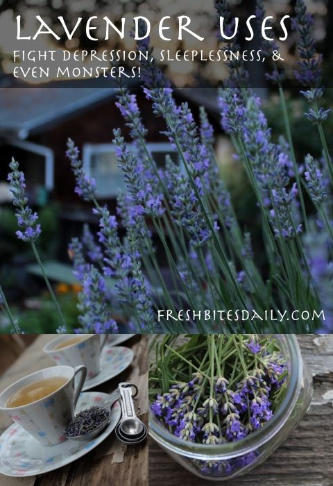 Are you fighting depression, sleeplessness, pain, skin irritation, or even monsters? Lavender's got your back.... #herbs #herbalremedies #naturalhealing #lavender