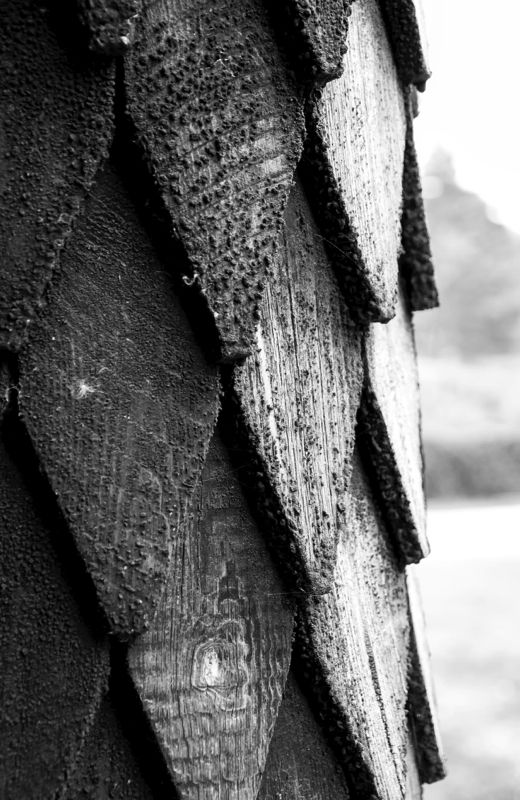 Egurrezko ezkatak (Wooden scales)