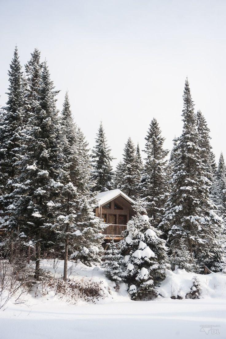☀ Mon rêve d'enfance enfin réalisé, dormir dans une cabane en bois dans la forêt canadienne. Wow ! ☀ Dormir dans une cabane dans les arbres au Québec (http://detourlocal.com/dormir-dans-cabane-dans-les-arbres-au-quebec/)  #HébergementsAlternatifs