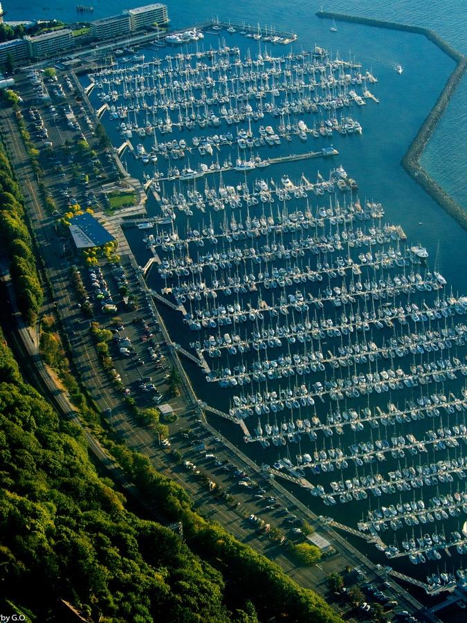 Shilshole Marina in Seattle Washington 44 best