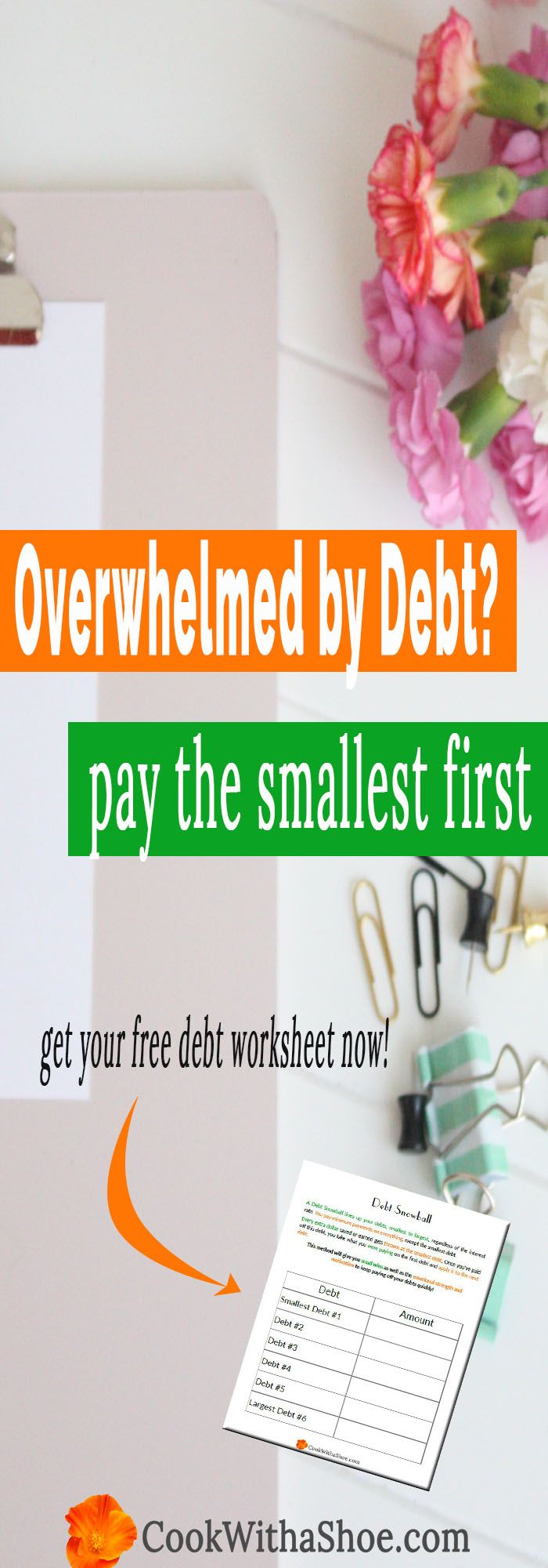 debt snowball | which debt do I pay first | highest interest debt vs smallest debt first | debt free | paying off debt | pay off debt fast | how to pay off debt fast | budgeting | Cook With a Shoe
