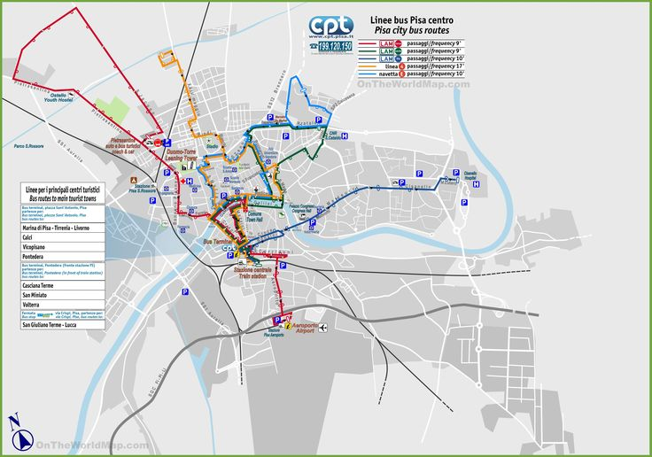 Pisa bus routes map