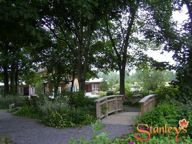 Stanley's Olde Maple Lane Farm