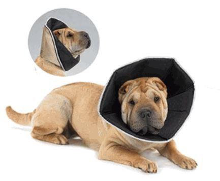 All Four Paws Comfy Dog Cone - Keep Doggie Safe                                                                                                                                                                                 More