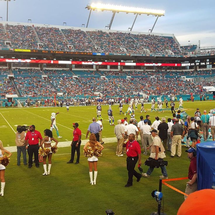 Meanwhile at the #Dolphins vs. #Bills game... #NFL #Sunday #Football