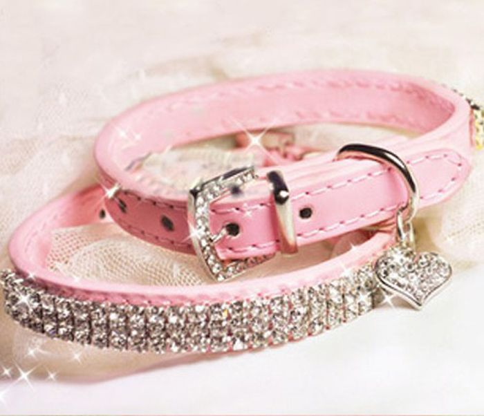 Small Leather Friendship Collars For Dogs