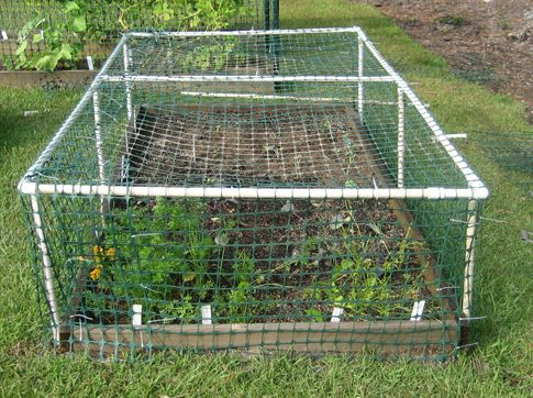 How to build a multipurpose raised bed protective cover - Char's Gardening