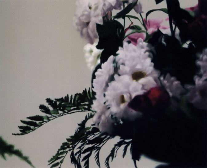 https://www.gerhard-richter.com/de/art/paintings/photo-paintings/flowers-40/flowers-7922/?p=1