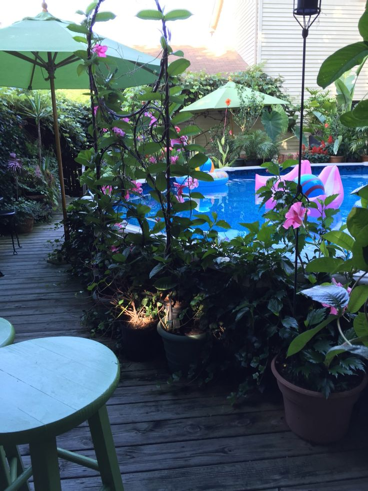 Pin by cindy on above ground pool and tiki bar pool bar - Above ground pool bar ...